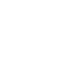 noun_insights_2198129_white